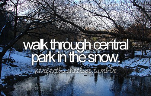 before-i-die-bucket-list-bucketlist-central-central-park-Favim.com-288263