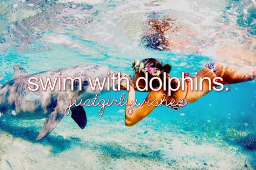 bucketlist-dolphins-girly-girlywishes-Favim.com-529967